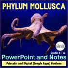 Phylum Mollusca (Mollusk, Clam) Powerpoint Presentation