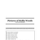Pictures of Hollis Woods by Patricia Reilly Giff Novel Guide
