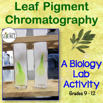 Pigment Chromatography - Separating Leaf Pigments