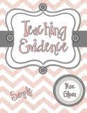 Pink & Gray Teaching Evidence Binder Covers - TESS