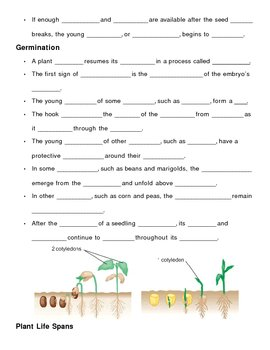 Plant Growth and Development Notes Outline Lesson Plan