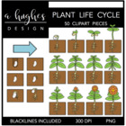 Plant Life Cycle {Graphics for Commercial Use}