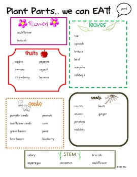 Plant Parts We Eat! [a printable activity]
