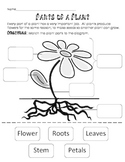 Plant Parts and Jobs Cut and Paste-  3 lesson activities,