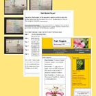 Plant Projects: Standards Based: Poster-Booklet-Powerpoint