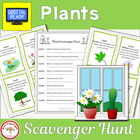 Plant Scavenger Hunt plus bonus graphic organizer