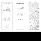 Plant and Animal Cells Brochure  Ce-1