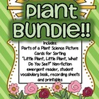 Plants Bundle PACK!! {Sorting cards, emergent reader, stud