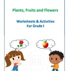 Plants  Fruits & Flowers worksheets for Grade 1