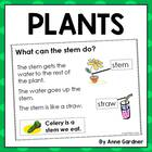 Plants - Kindergarten Reading Comprehension Packet