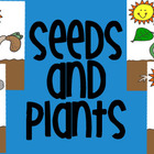 Plants &amp; Seeds Clipart