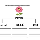 Plants Tree Map and Scrambled Sentences