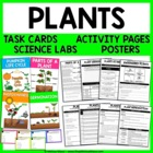 Plants - Unit Activities