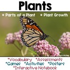 Plants: Vocabulary Cards, Assessments & Activities