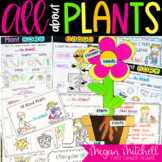 Plants for Primary Teachers