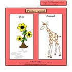 Plants or Animals!  (Classifying  Plants &amp; Animals)