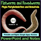 Platyhelminthes and Nematoda (flatworms and roundworms) po