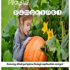 Playful Pumpkins:  Learning about pumpkins through explora