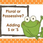 Plural or Possessive - Posters and Practice for Adding S or &#039;S