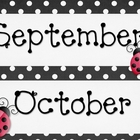Polka Dot &amp; Ladybug Calendar Set