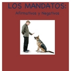 Positive and Negative Informal Commands Practice