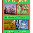 Poster  about the seasons in Italian .Green