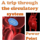Power point: A trip through the circulatory system