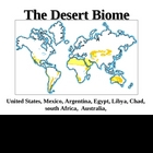 PowerPoint - The Desert Biome