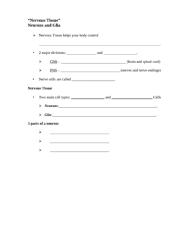 Powerpoint on Tissues - Student Worksheet