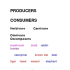 Producers and Consumers Closed Word Sort