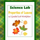 Propeties of Leaves Lab