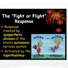 Psychology: Fight or Flight Response PPT Notes &amp; Analytic 