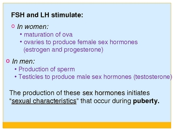 Puberty and the Female Reproductive System