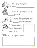 Pumpkin Estimation & Measuring