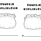 Pumpkin Pumpkin Investigation