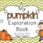 Pumpkins: Exploration Booklet &amp; Activities