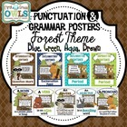 Punctuation and Grammar Posters