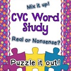 Puzzle CVC Word Study Learning Center