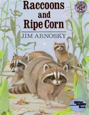 Racoons and Ripe Corn