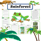 Rain Forests Unit- Grades 1-3 - Magic Tree House