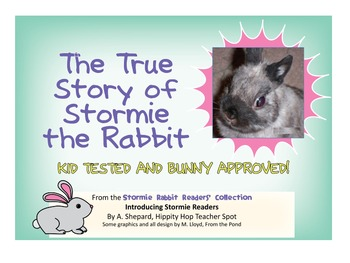 Reader - The True Story of Stormie the Rabbit