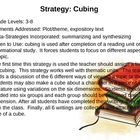 Reading Comprehension PowerPoint with Strategies