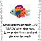 Reading  Decoding Strategies using Beanie Babies