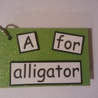 Reading Fluency: A for Alligator Text Only Word Family Book