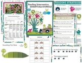 Reading Intervention Essentials Bundle