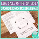 Reading Passage Practice - Life Cycle of the Butterfly