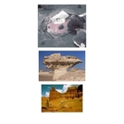 Regents Earth Science: Weathering, Erosion, Landscapes & D