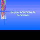 Regular Affirmation tu commands