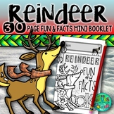 Reindeer! - Fun and Facts Reindeer booklet