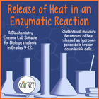 Release of Heat in an Enzymatic Reaction (Catalase)